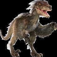 Velicoraptor-Dinosaur_1